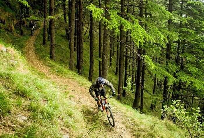 A cyclist biking in the hills of Manali