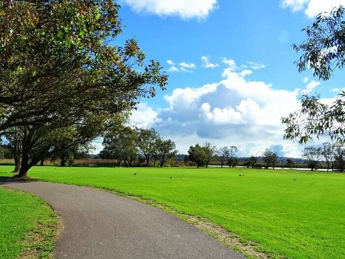 A bright day at Herdsman Lake - perfect to enjoy the Jon Sanders Drive
