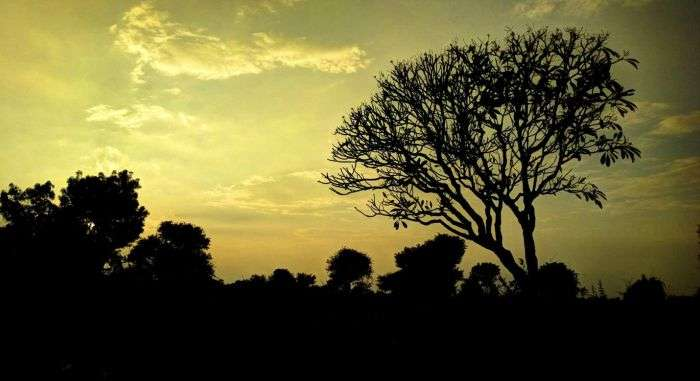 Panoramic evening silhouettes of Mahbubnagar
