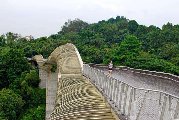 Meandering Southern Ridges is among the places to visit in Singapore for free