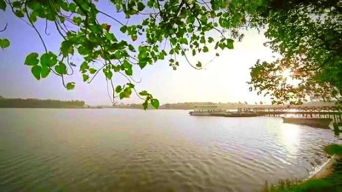 Boating in Mudaliakuppam backwaters