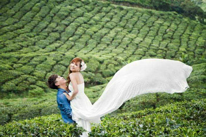 Honeymoon in Munnar