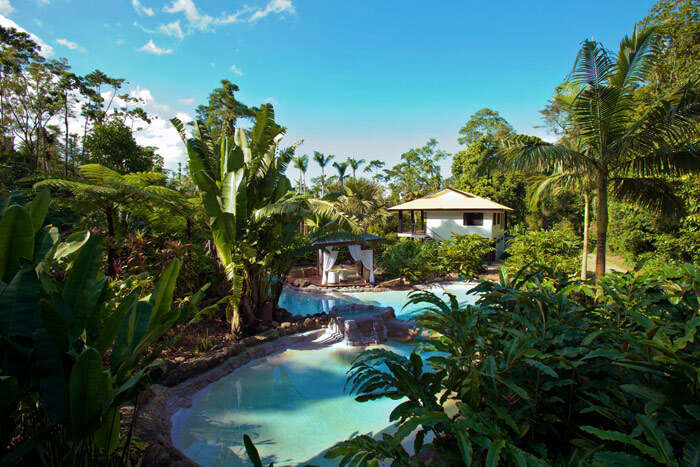 Rainforests of Northern Queensland are the most romantic place for honeymoon in Australia