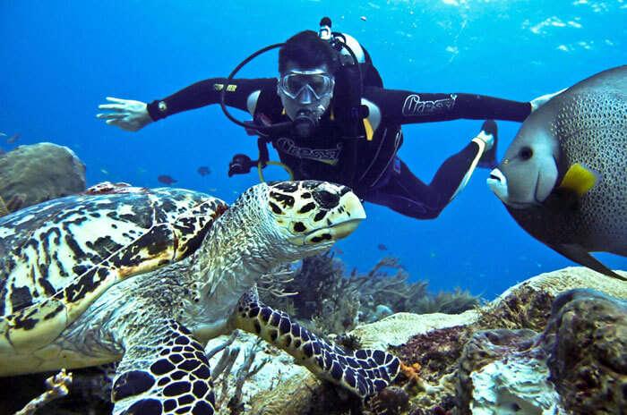 Scuba Diving in beautiful Netrani Island