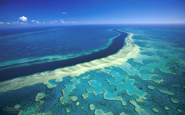 The Great Barrier Reef is one of the most adventurous honeymoon places in Australia