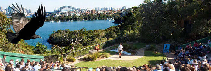 An event taking place at the Taronga Zoo