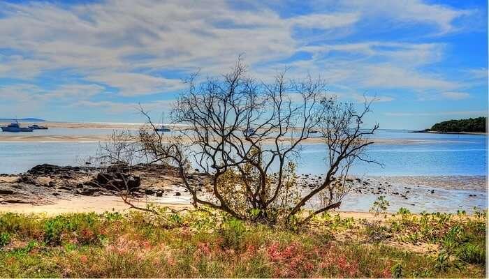 Red Rocks Beach, Coffs Coast