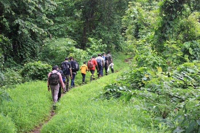People walking on the nature trail of Sanjay Gandhi National Park – A fun place in Mumbai amidst the wilderness