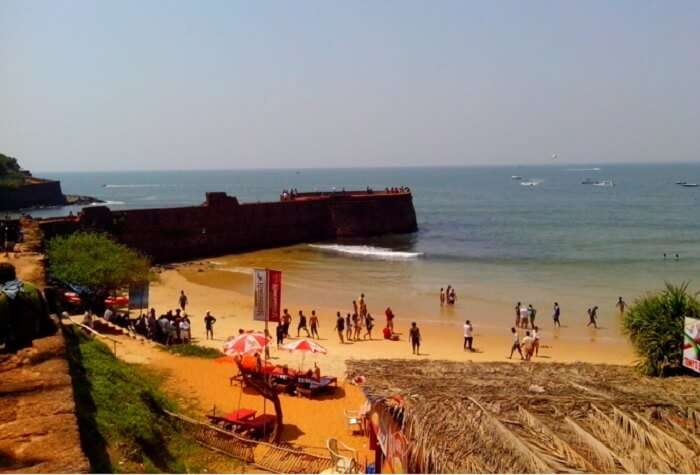 Sinquerim Beach – One of the famous beaches in Goa for some birdwatching