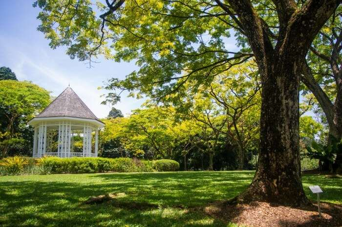 The picturesque view of the Botanical Gardens