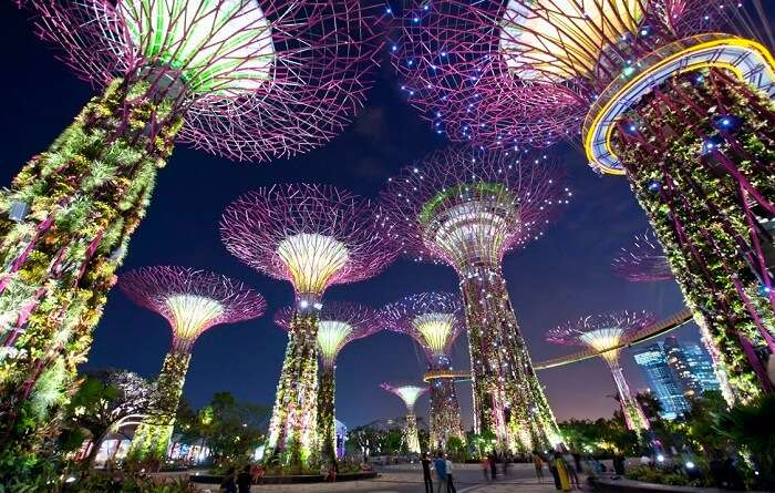 the beautiful gardens by the bay