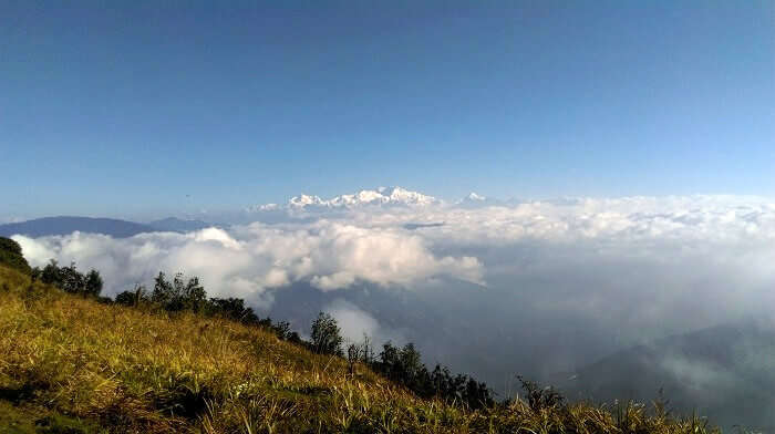 A view of the Himalayas from Sandakphu
