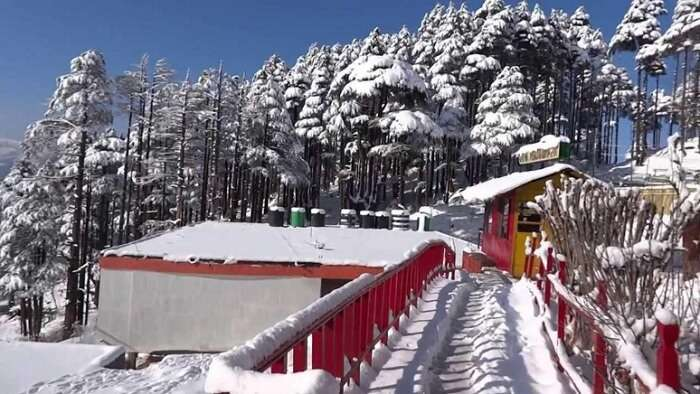 Patnitop looks pretty and colorful on a sunny winter day