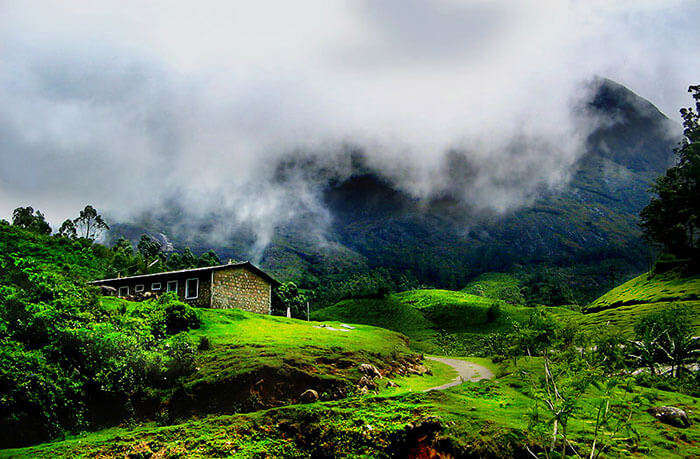 A road trip from Bangalore to Munnar through the beautiful hills of Munnar