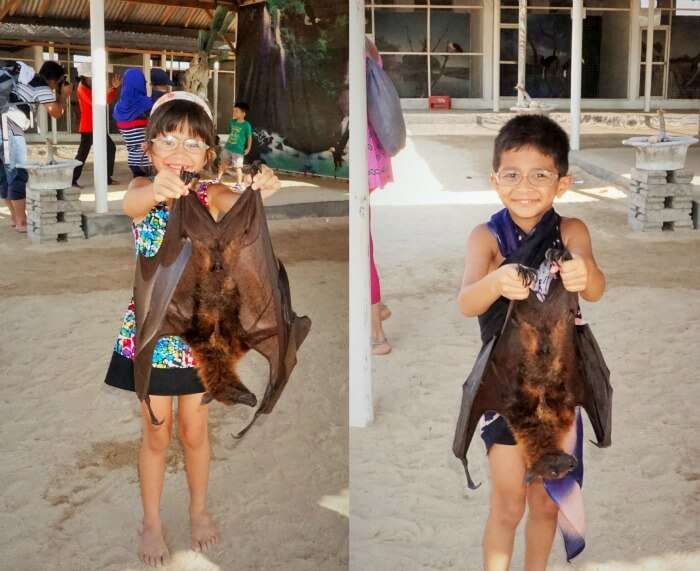 Adorable children holding some bats