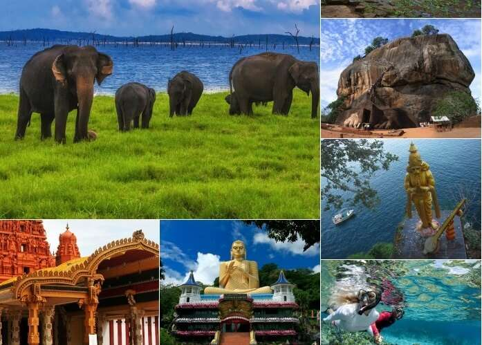 Best of Sri Lanka & Beyond