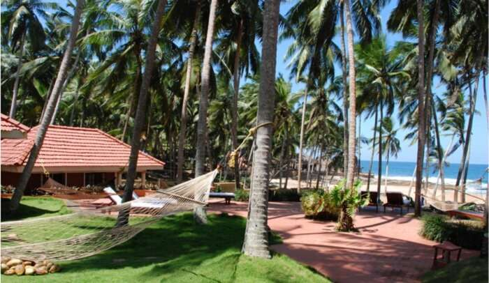 The serenity at the vast lands of Coconut Bay Beach Resort, Kovalam is an amazing experience to cherish