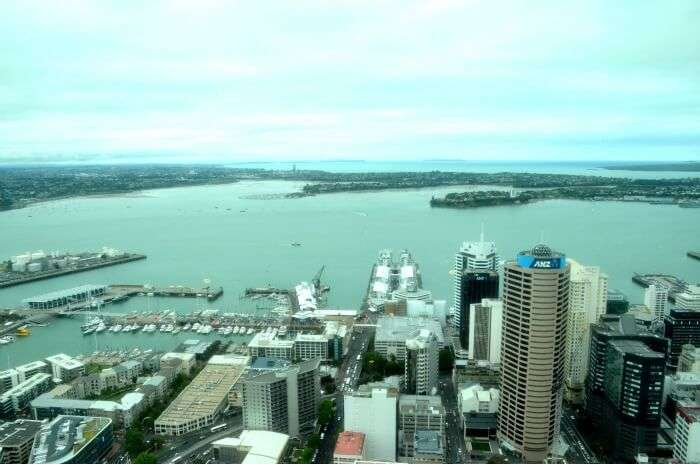 View of the beautiful Auckland city from a height