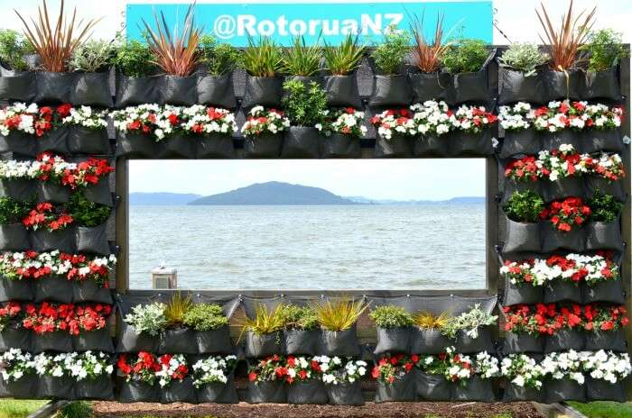 Beautiful sea and mountain view from the seaside Rotorua