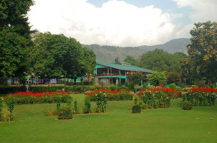 Kokernag is the best amongst all hidden romantic places in Himalayas