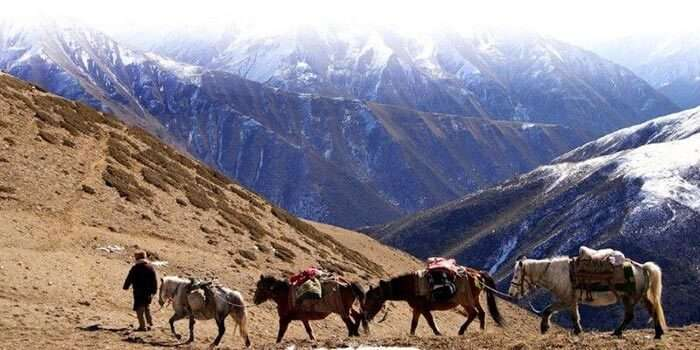 A man taking his herd through the supposedly alien inhabited Kongka La Pass