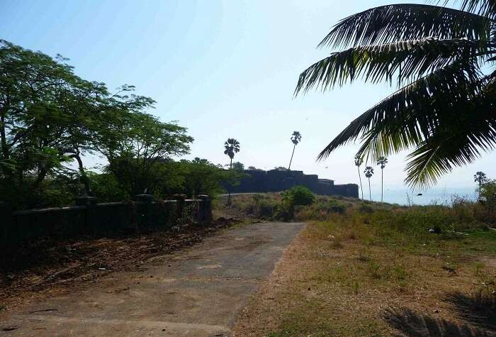 A snap of the haunted road between Marve and Madh Island