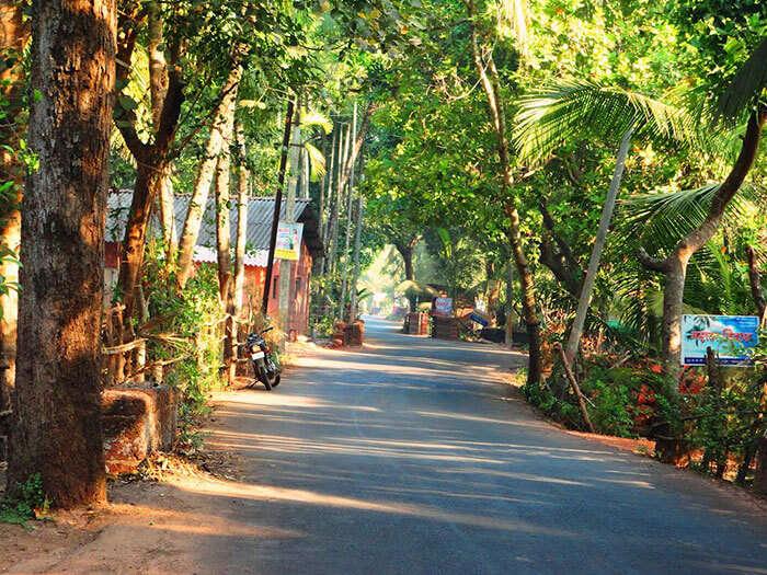 The roads leading from Mumbai to Tarkarli