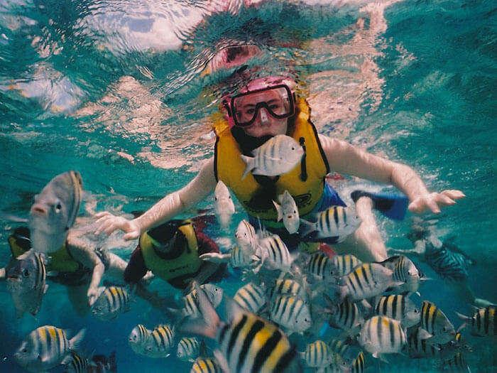 Snorkeling in Bali at cheap rates