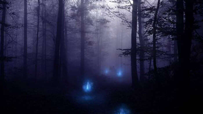 Mysterious glowing lights on the marshes in West Bengal