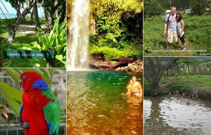 A collage of the major tourist attractions in Fiji