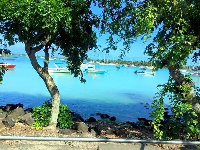 Lush green scenery in Mauritius