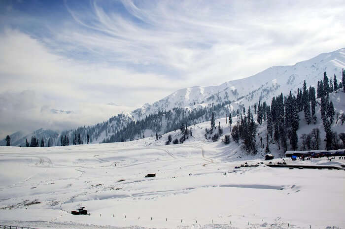 Gulmarg top of the mountain
