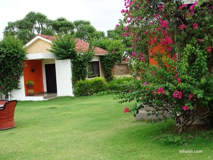 The vast spread of greenery and tented accommodations make Pushkar Hill Resort a preferred resort in Pushkar