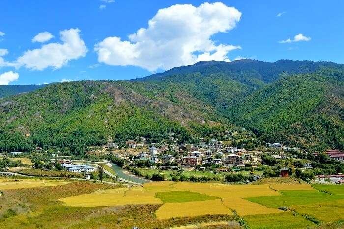 Scenic Thimphu city