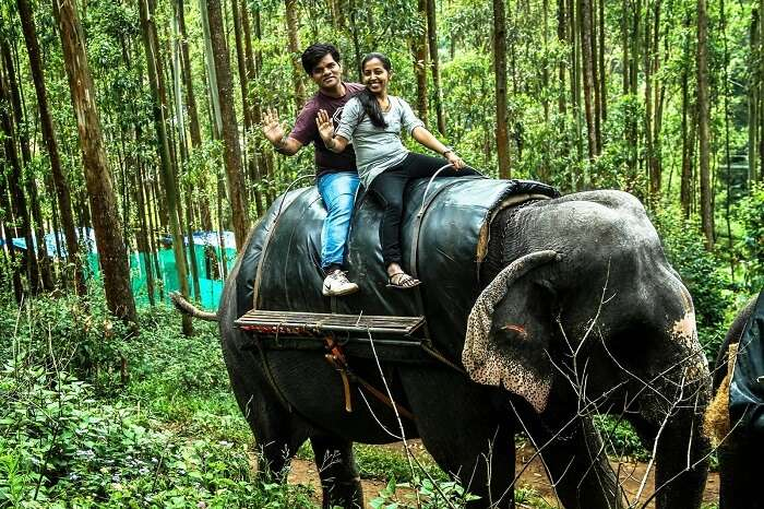 A couple takes an elephant safari at the Carmelagiri Elephant Park in Munnar