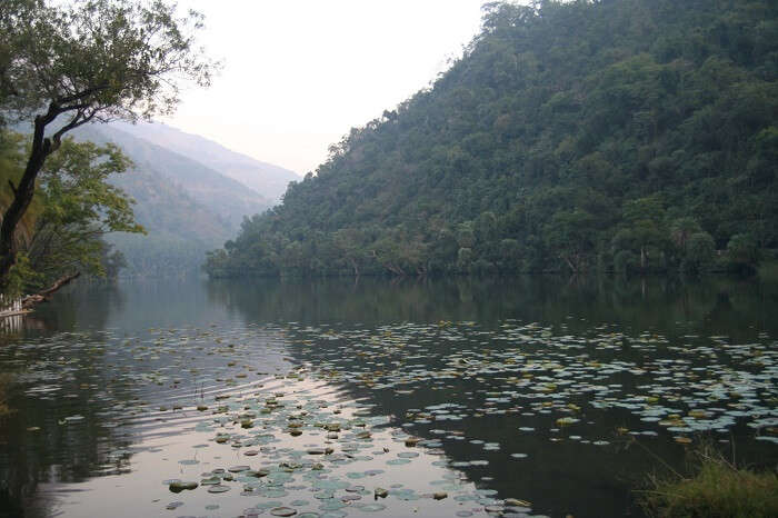 A shot of the serene Renuka Lake in Nahan