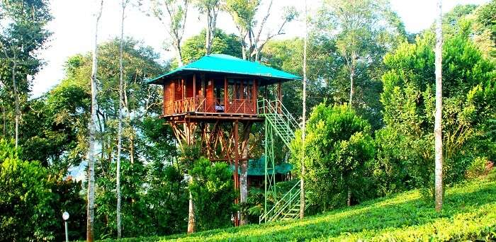 A tree house at the Dream Catcher Plantation Resort in Munnar