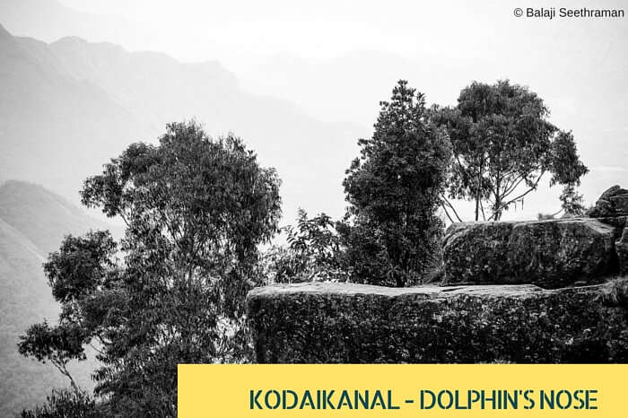 A shot view of Dolphin Nose hill at the quaint Kodaikanal