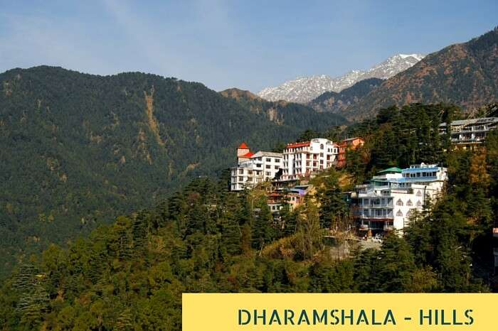 Houses at Himalaya mountains in Dharamshala