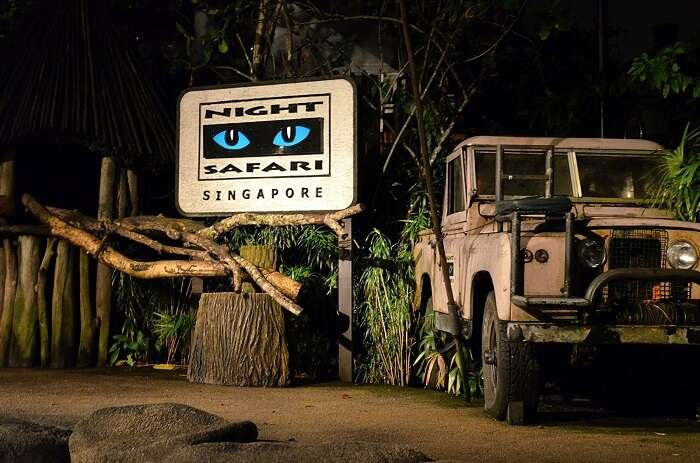 A jeep signifies the gist of everything about Singapore Night Safari
