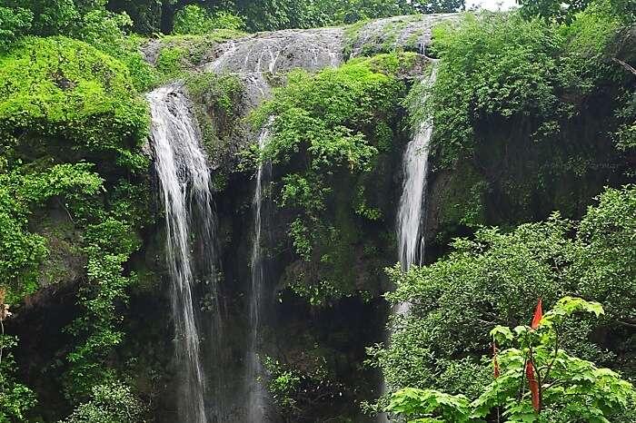 Hathni waterfall is 100 metres high and a serene picnic spot near Vadodara