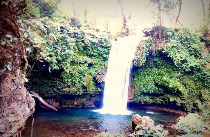 Rajveer's visit to the Corbett Waterfall