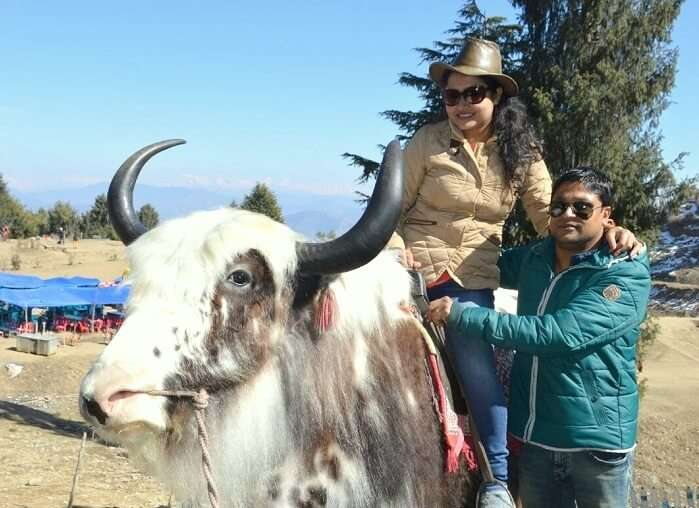 Madhumita on a yak in Manali