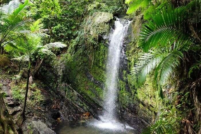 An enchanting view of the Satdhara Falls in Dalhousie