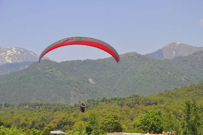 That feeling of being a Flying Bird from Asia's highest Point for Paragliding- Bir Billing