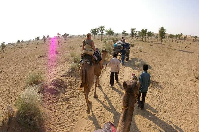 Tourists on a camel safari in the Thar Desert near Bikaner