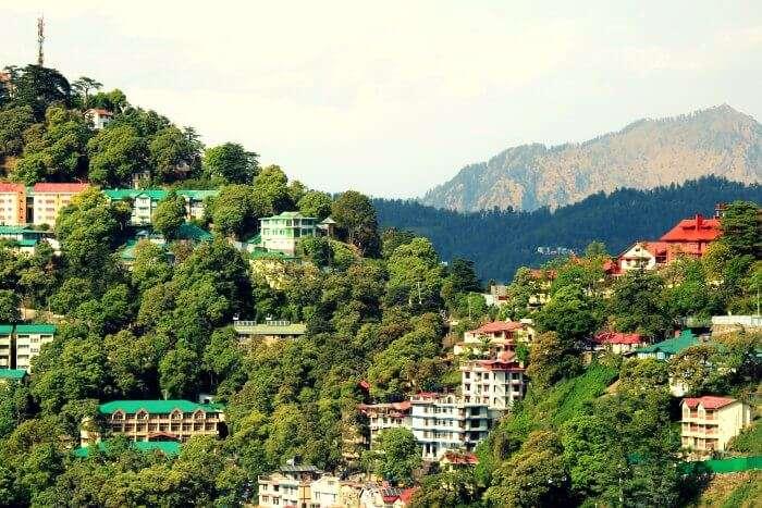 The lush hills of Mashobra near Shimla