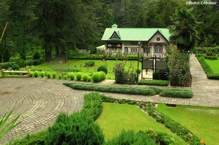 The lush greens of the Military Museum at Annandale in Shimla