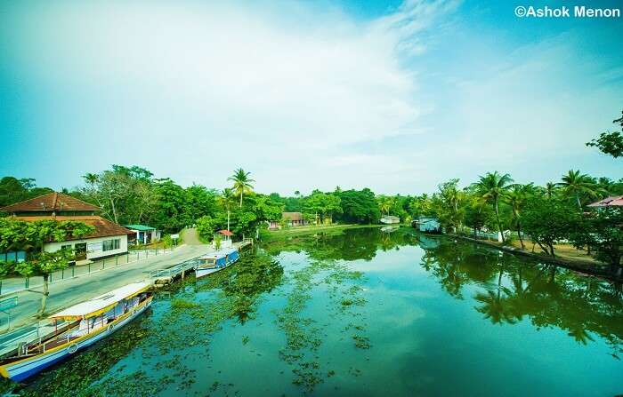 The lakeside paths for casual strolls around the Vembanad Lake