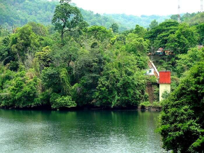 A beautiful gorge of Dandeli is one of the serenest places to visit in Karnataka